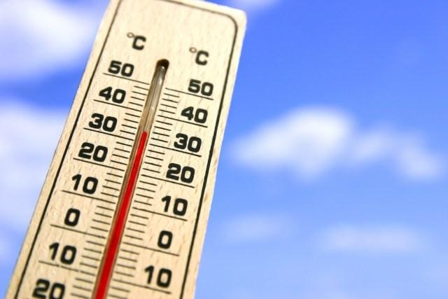 猛暑 昨日の食事 バイナリーの結果 仮想通貨 億万長者 借金